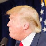 Donald_Trump_haircut,_Laconia,_by_Michael_Vadon_July_16_2015_(cropped)