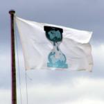 wikileaksflag