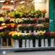 FlowerShop_ShangHaiStreet_HK
