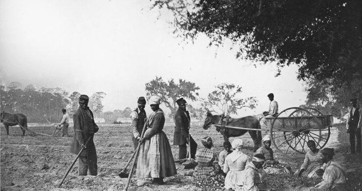 James_Hopkinsons_Plantation_Slaves_Planting_Sweet_Potatoes